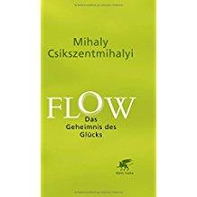 Flow - Das Geheimnis des Glücks